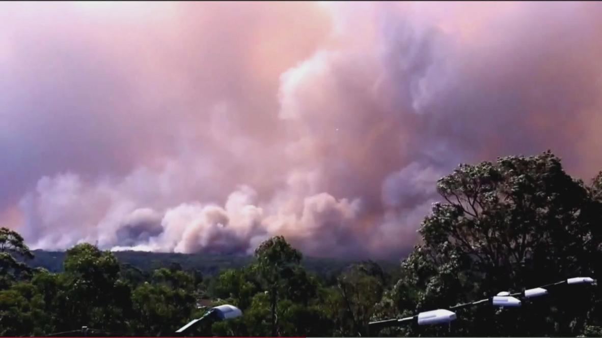Australia: Bushfire smoke clouds engulf NSW