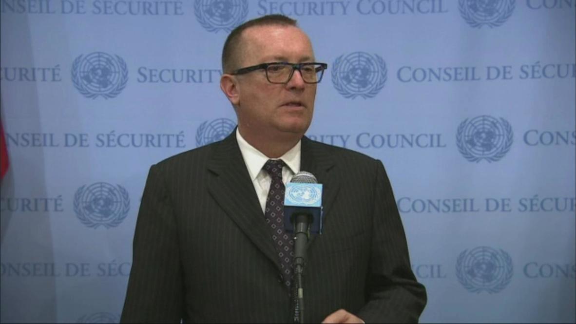 UN: Violence must stop in Central African Republic- UN advisor