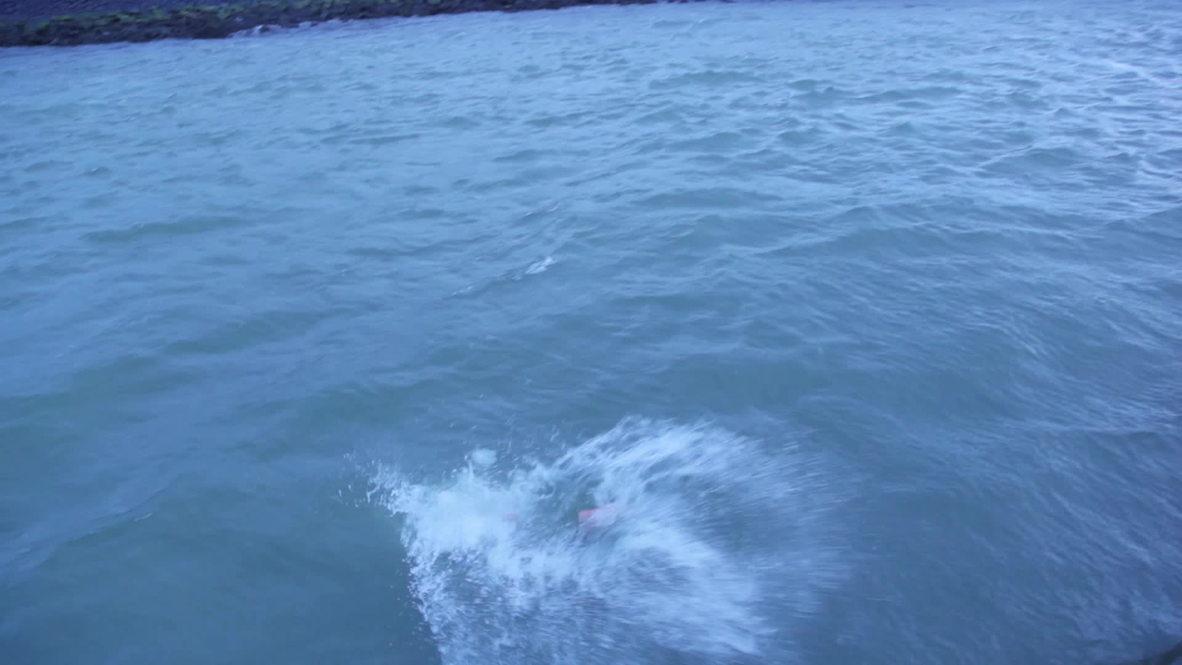 Netherlands: See moment German professor finishes 1,230-km Rhine swim