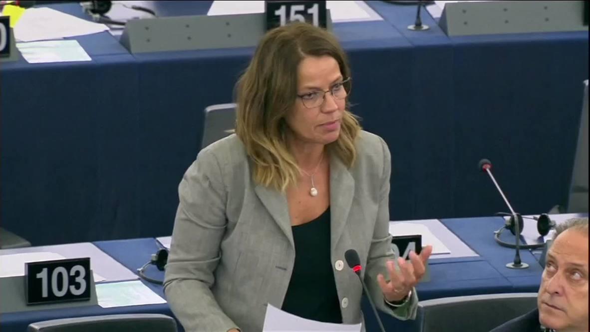 "France: ""Europe must build bridges with Russia, not erect walls,"" warns MEP Gardini"