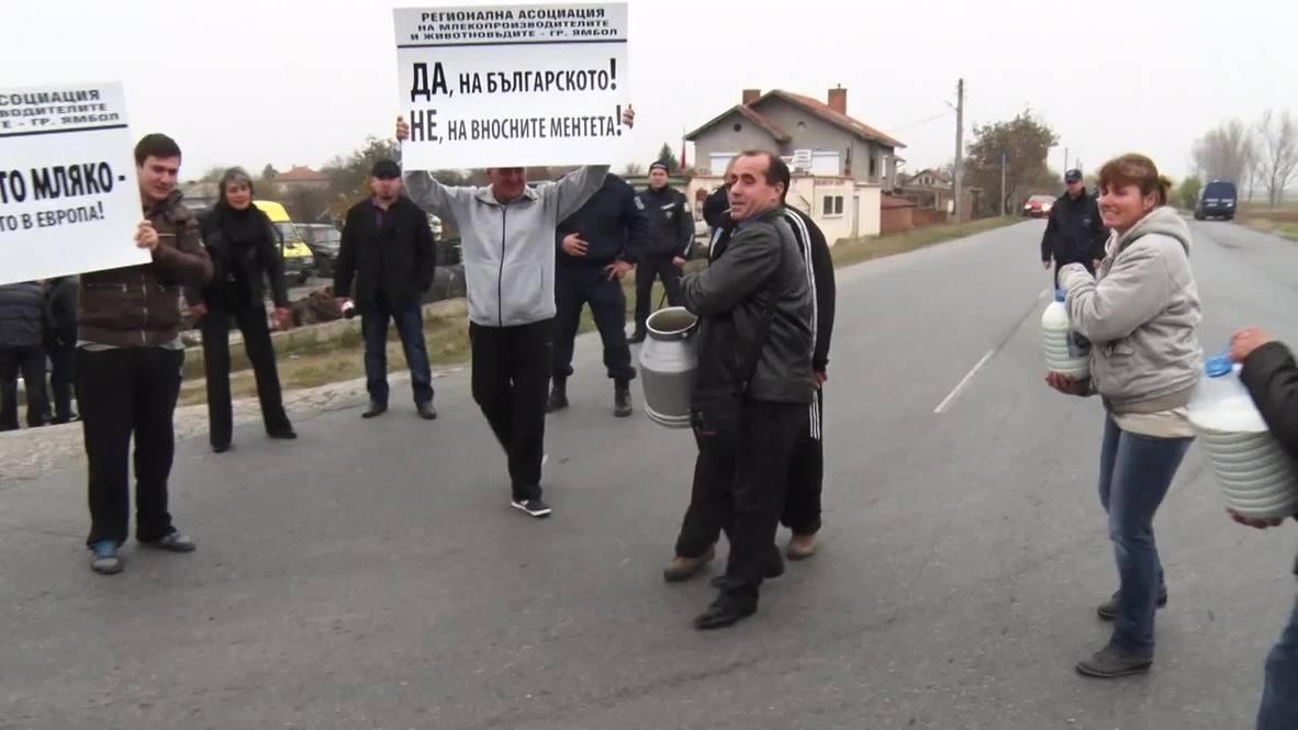 Bulgaria: Roads run white with milk in anti-EU protest
