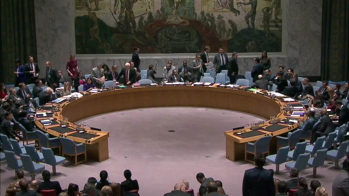 UN: UN Security Council talks North Korea human rights