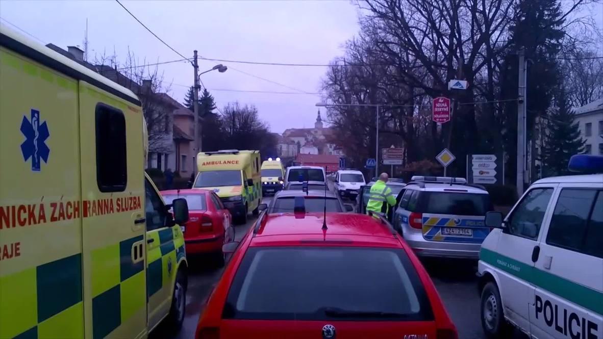 Czech Republic: Eight people shot dead in restaurant