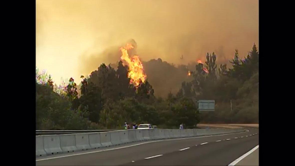 Chile: Giant blaze ENGULFS forest near Valparaiso, thousands evacuated