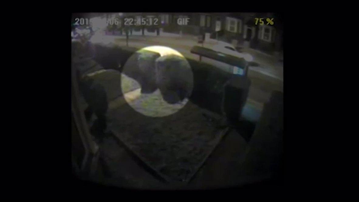 UK: CCTV captures shocking sexual assault on teen