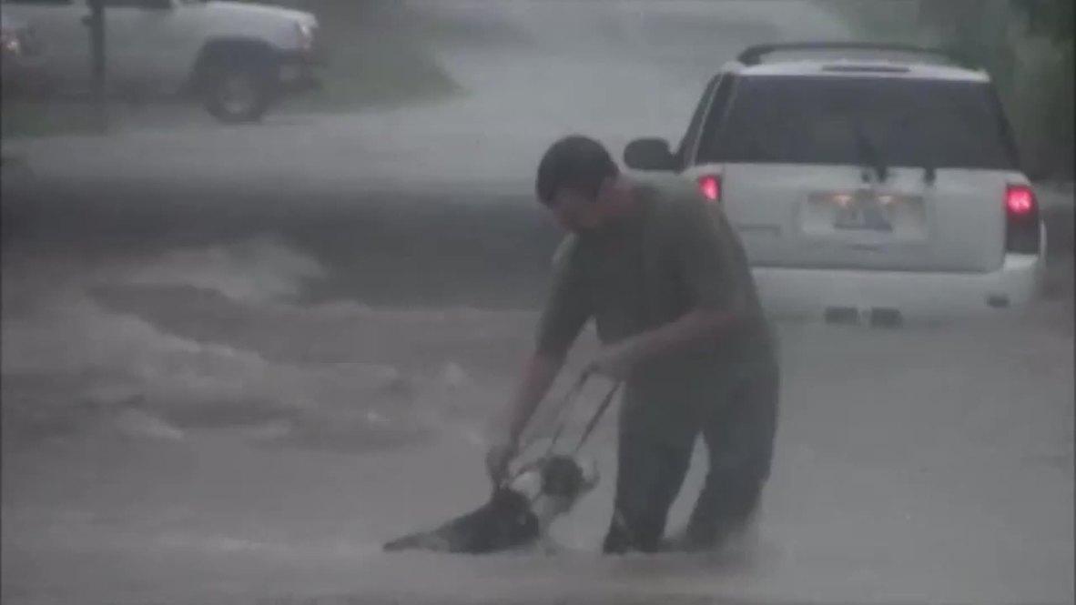 USA: See brave dog-owner battle floods in pet rescue
