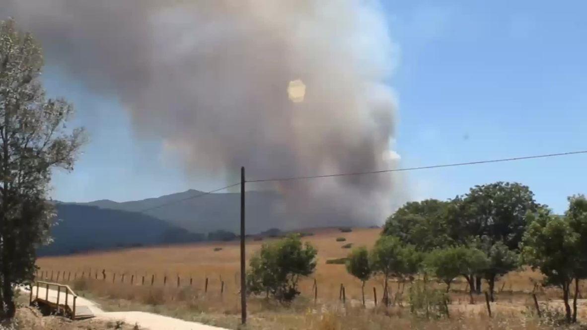 Spain: Firefighters battle huge forest fire near Cadiz