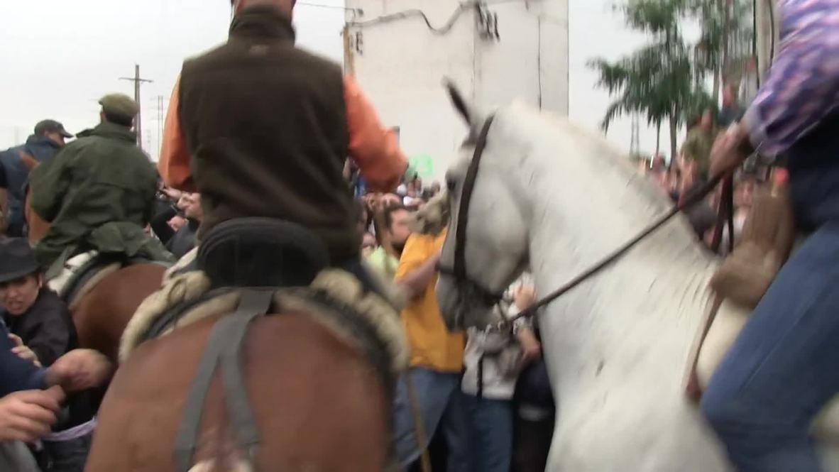 Spain: Bull tears through Tordesillas' streets amid spear-wielding chaos