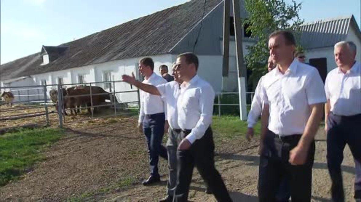 Russia: Medvedev visits farm in Krasnodar Krai