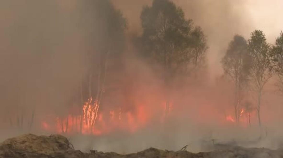 Germany: White phosphorus bomb detonates in Wittstock causing massive forest fire