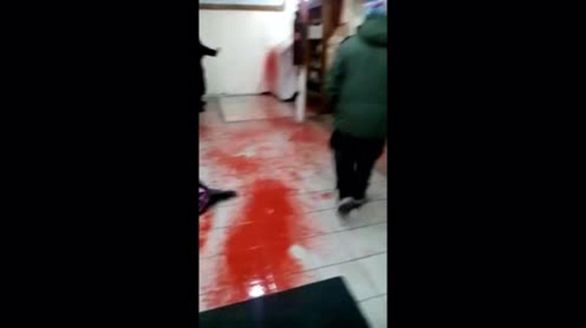 Ukraine: Synagogue in Uman vandalised with fake blood and pig's head bearing swastika