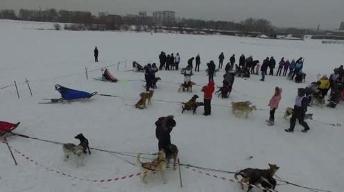 Russia: Huskies kick off 155-km dog sled race on frozen Lake Baikal
