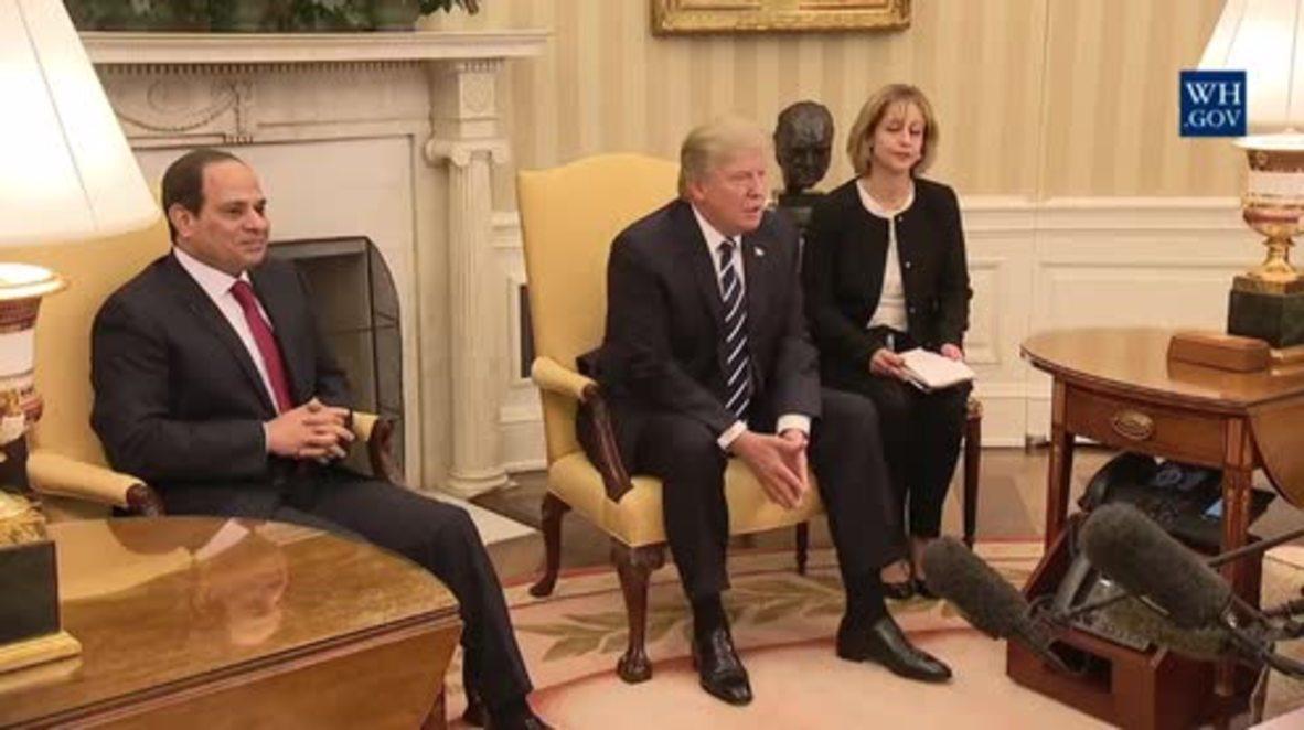 USA: Trump 'very much behind' Egypt's al-Sisi