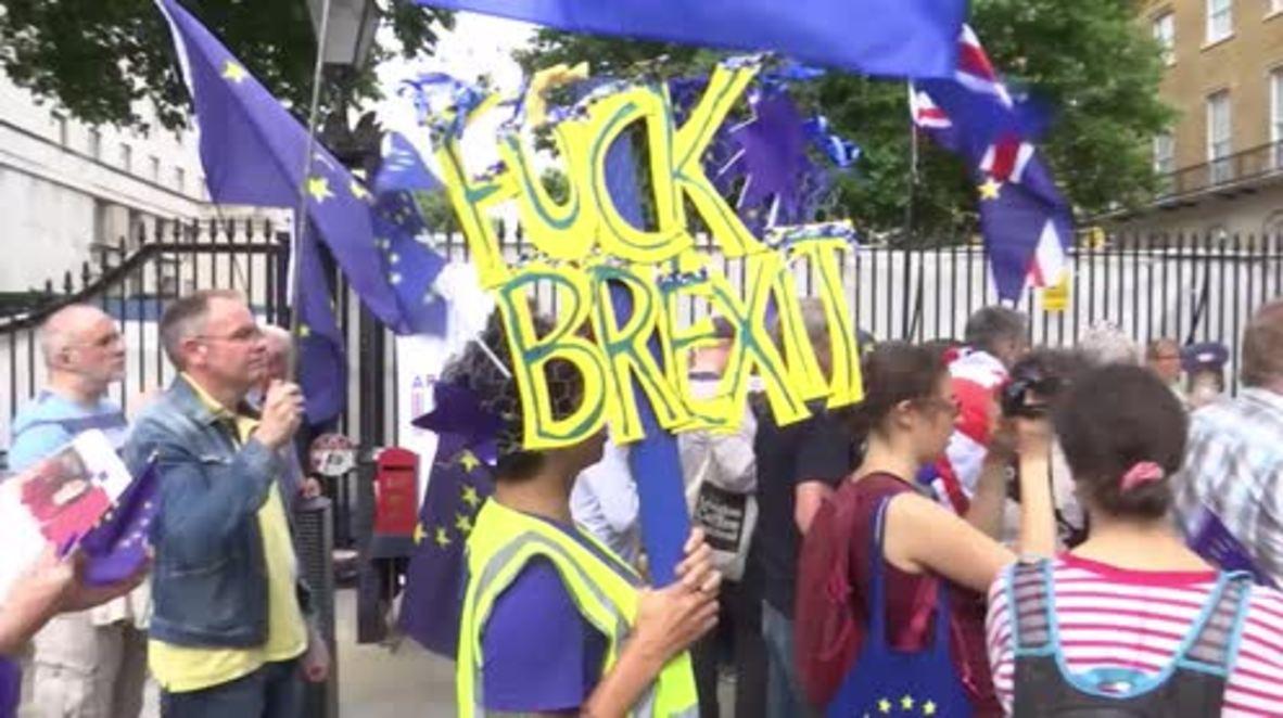 UK: 'No Theresa Mayhem!' say Anti-Brexit protesters at Downing Street