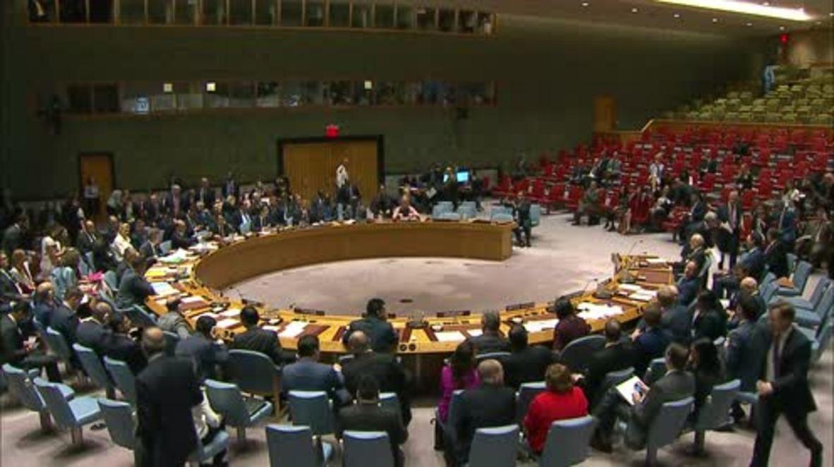 UN: 'A landmark' - UN envoy Haley lauds resolution to probe IS crimes in Iraq