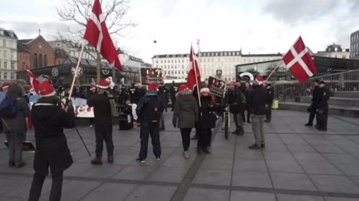 Denmark: Pegida rally marches through Copenhagen