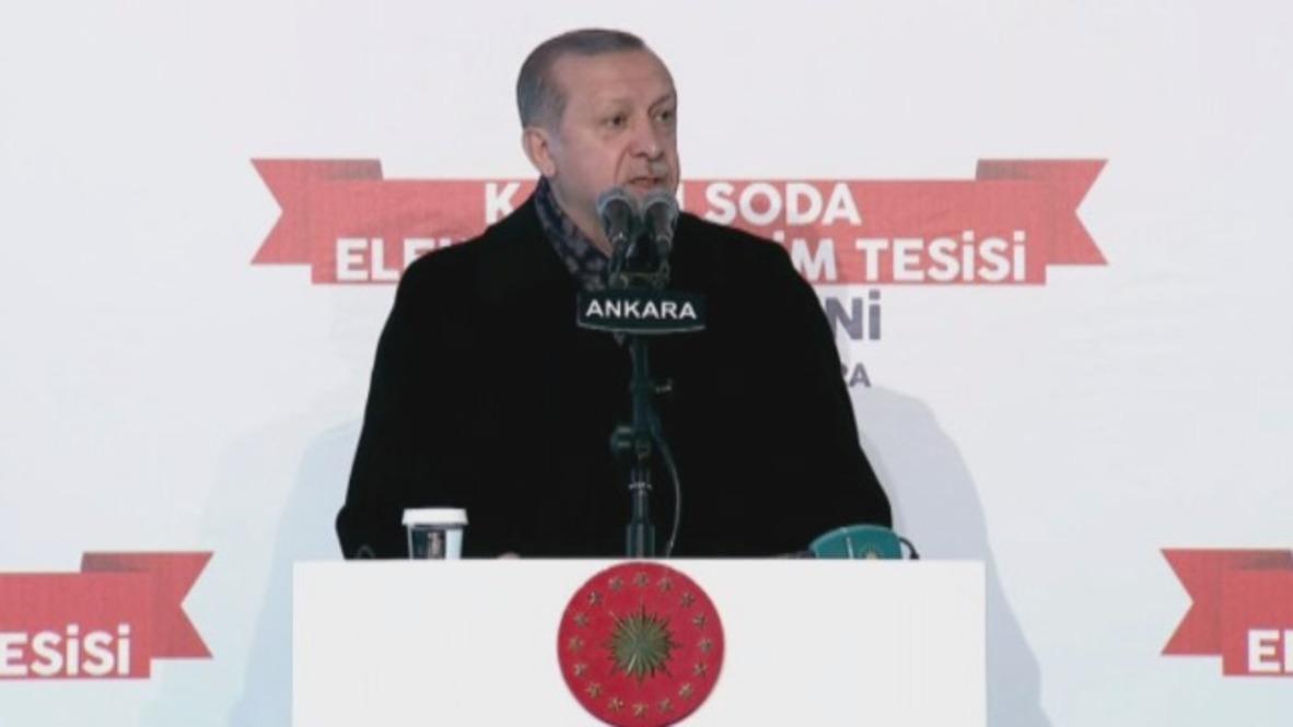 Turkey: Erdogan lambasts US 'terror army' plan
