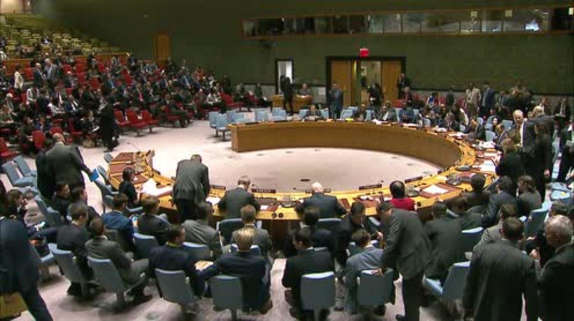 UN: 'Cui bono?' - Russian envoy asks UNSC of Salisbury case