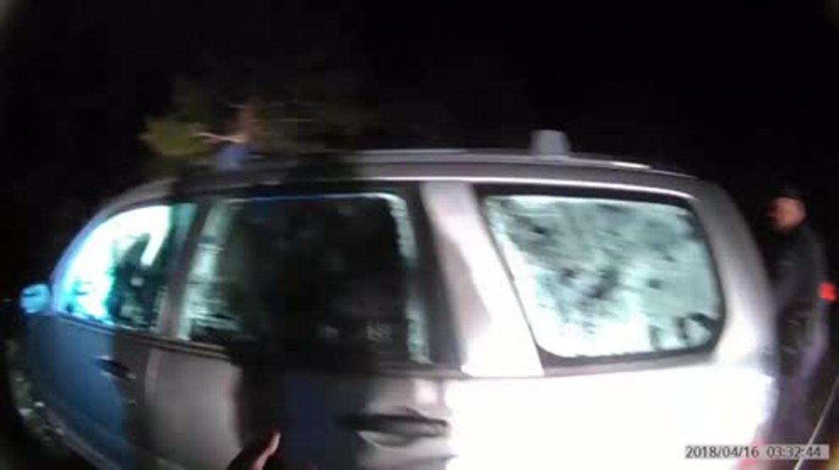 Watch trespassing bear being rescued after it locks itself inside car