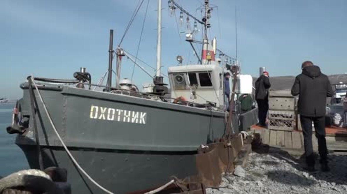 ADORABLE baby seals released into the wild near Vladivostok