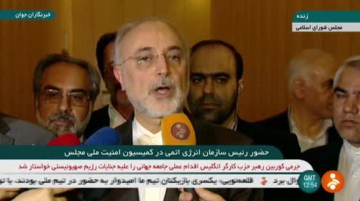 Irán: Europa debería compensar la salida de EE.UU. del JCPOA - Salehi