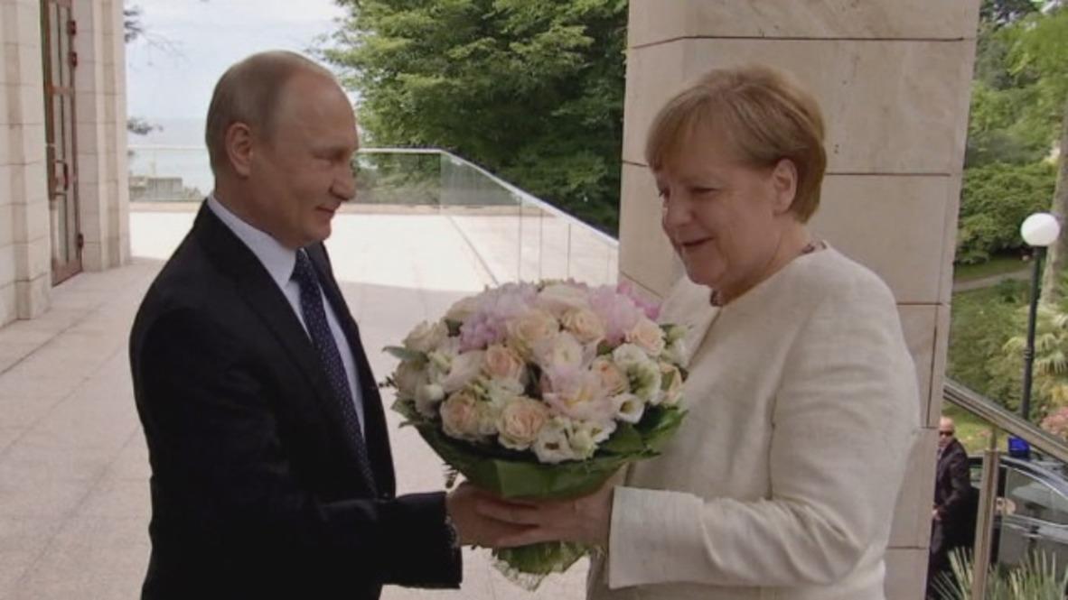 Russia: Putin greets Merkel with white rose bouquet in Sochi