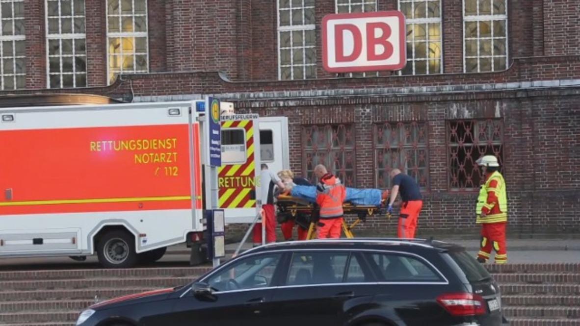 Alemania: Una policía mata a un hombre en un tren de Flensburg