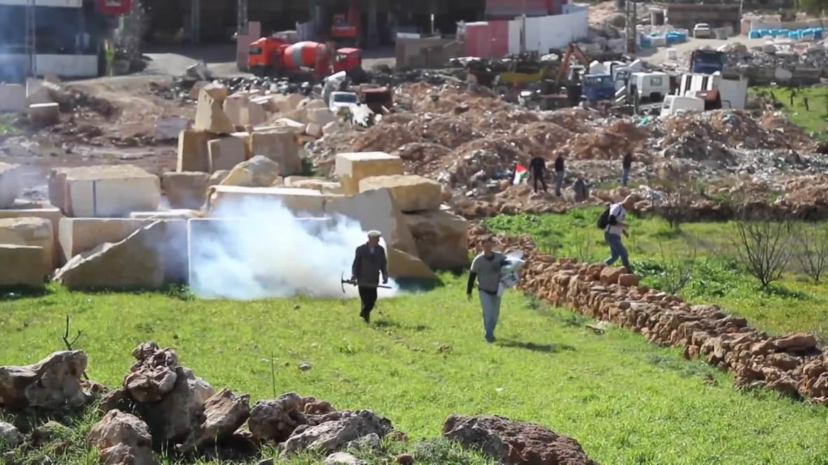 Estado de Palestina: Lluvia de gas lacrimógeno israelí cae sobre plantadores de árboles cerca de Belén
