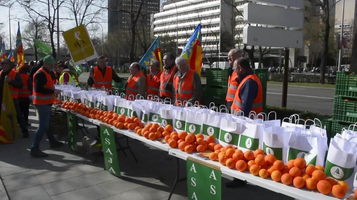 España: Los 'chalecos naranjas' protestan por el acuerdo UE-Sudáfrica sobre las importaciones