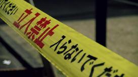 Japan: Tokyo court grants ex-Nissan chief Ghosn ¥1bn bail