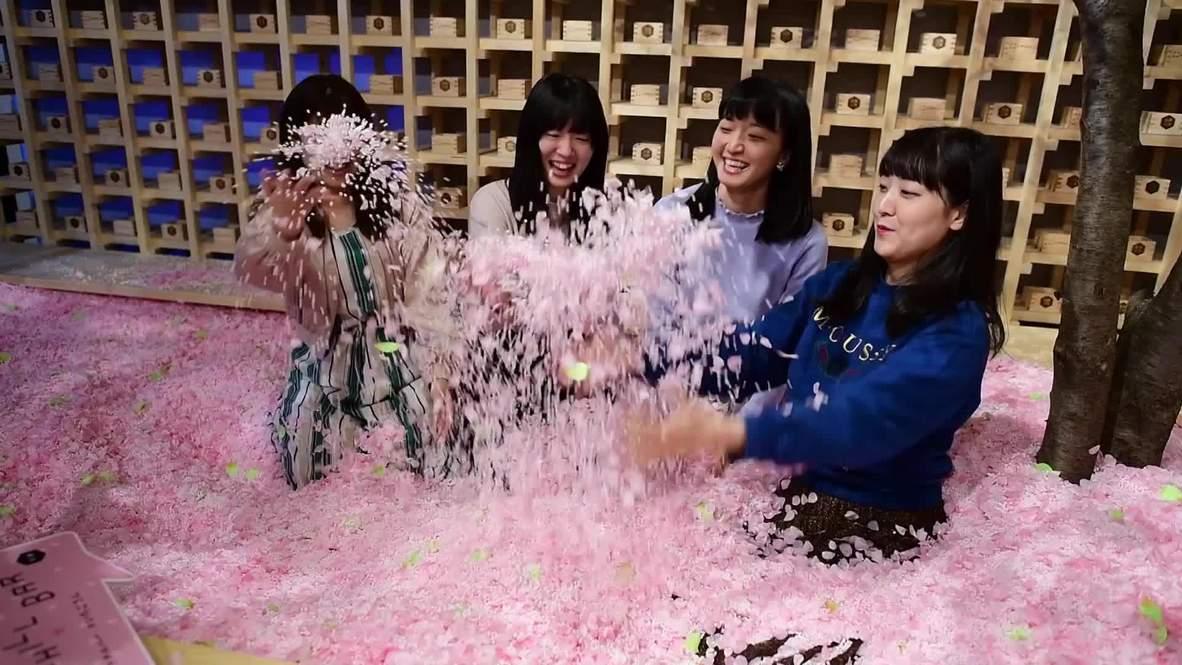 Take a pink plunge in Sakura Chill Bar's petal pool in Tokyo!