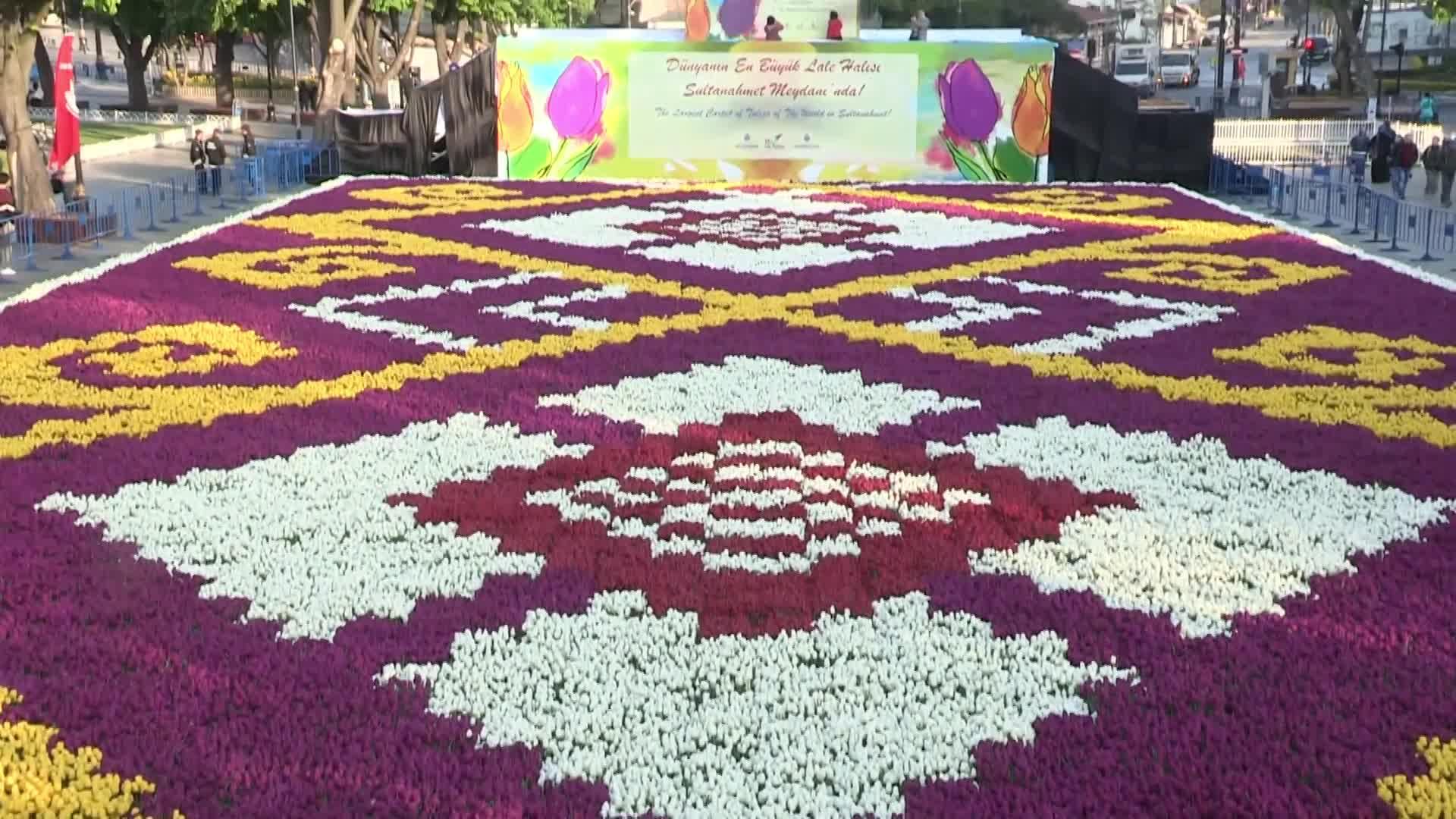 La alfombra de flores más grande del mundo