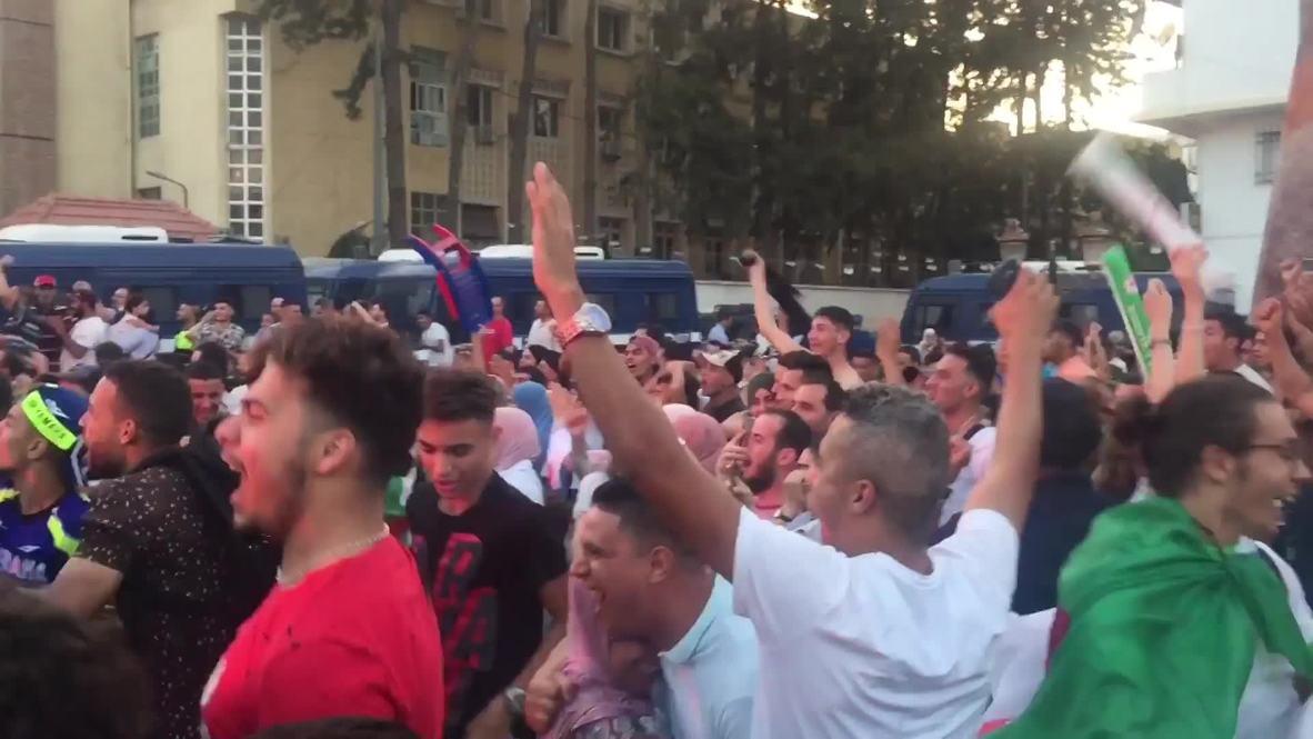 Algeria: Pandemonium as Algeria reach Africa Cup of Nations semi-finals
