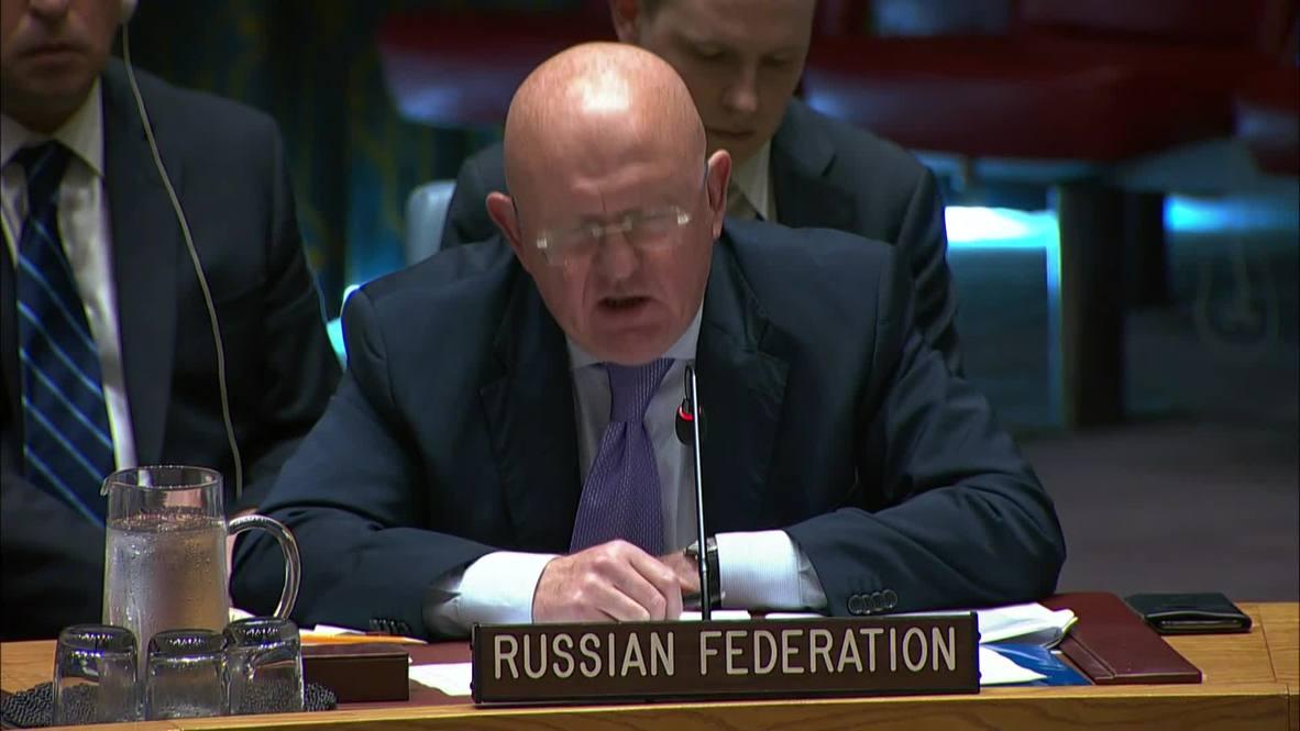 UN: Western countries aim 'to sustain a terrorist presence in Idlib' - Nebenzya