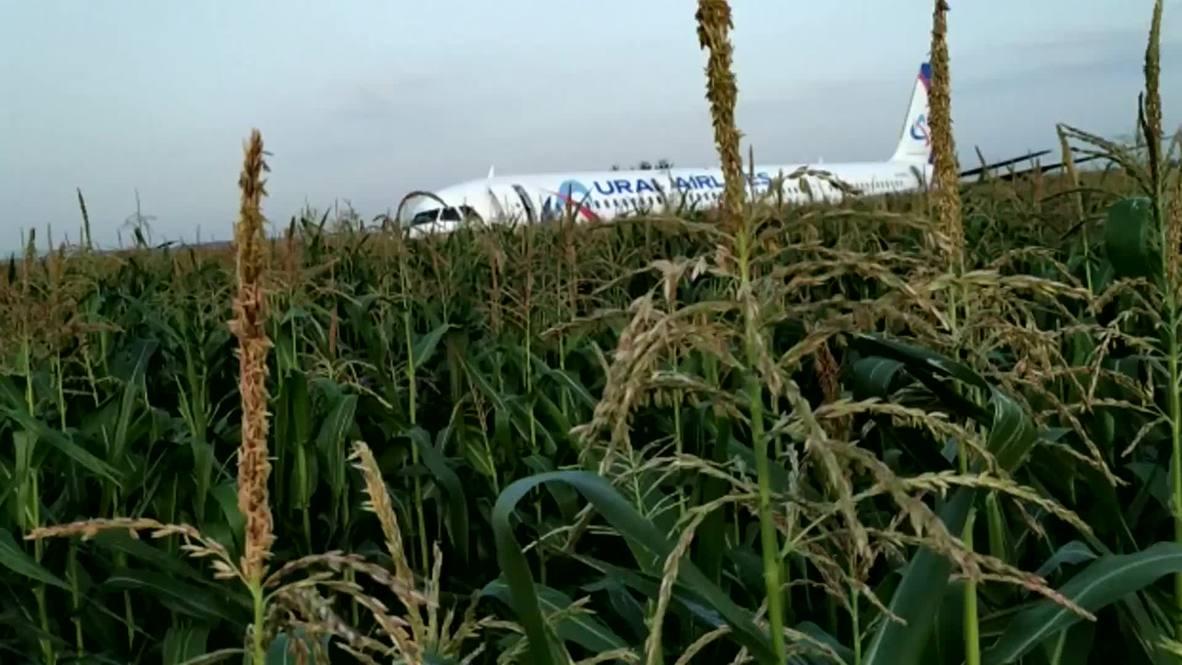Rusia: Diez personas heridas durante aterrizaje forzoso en un campo de maíz cerca de Moscú – EMERCOM