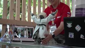 Россия: Несколько па робота в папахе. Рогозину представили танцующего лезгинку робота
