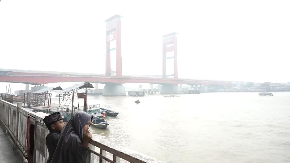 Indonesia: La neblina tóxica de los incendios forestales afecta al país