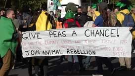 """Reino Unido: """"Mr. Brócoli"""" monta una fiesta vegetariana en Londres para poner fin a la """"crisis climática"""""""