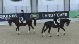 El estiércol de caballo ilumina el Salón Internacional del Caballo en Finlandia