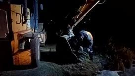 Спасение утопающих - дело рук строителей! В Екатеринбурге из озера спасли собаку с помощью экскаватора