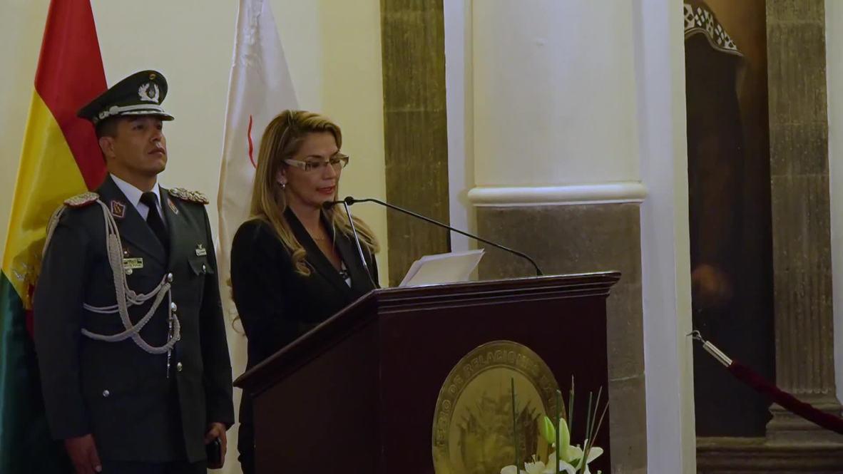 Bolivia: Interim president Anez appoints emergency cabinet