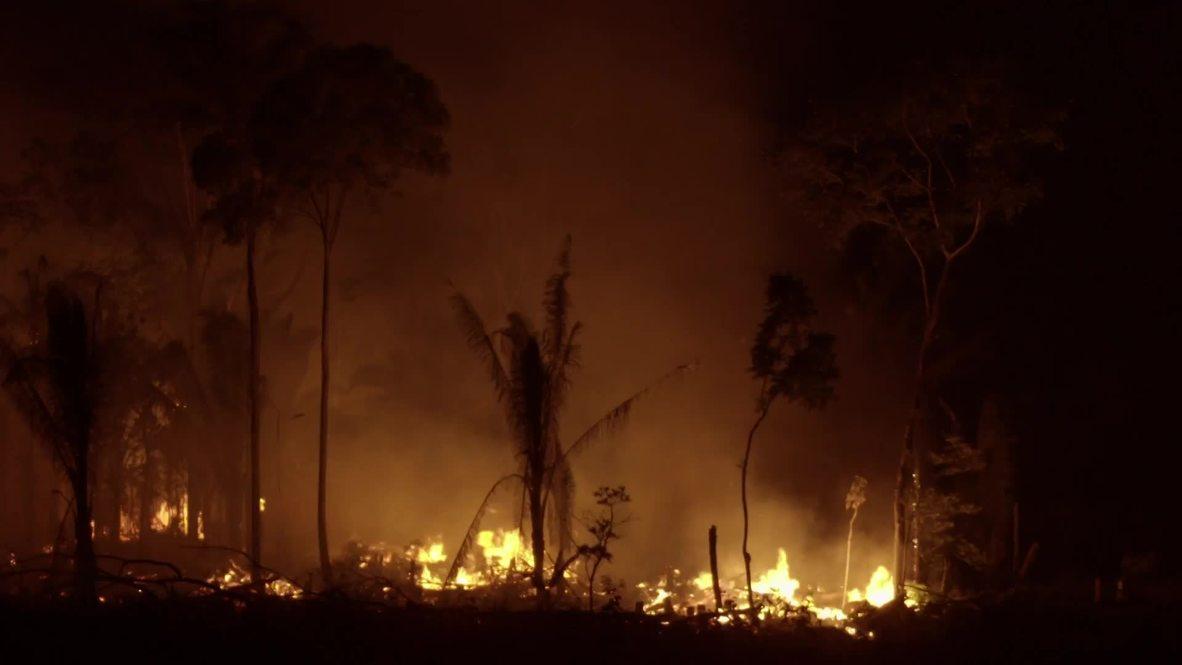 Combatiendo el fuego: La lucha indígena por el Amazonas *CONTENIDO DE SOCIOS*