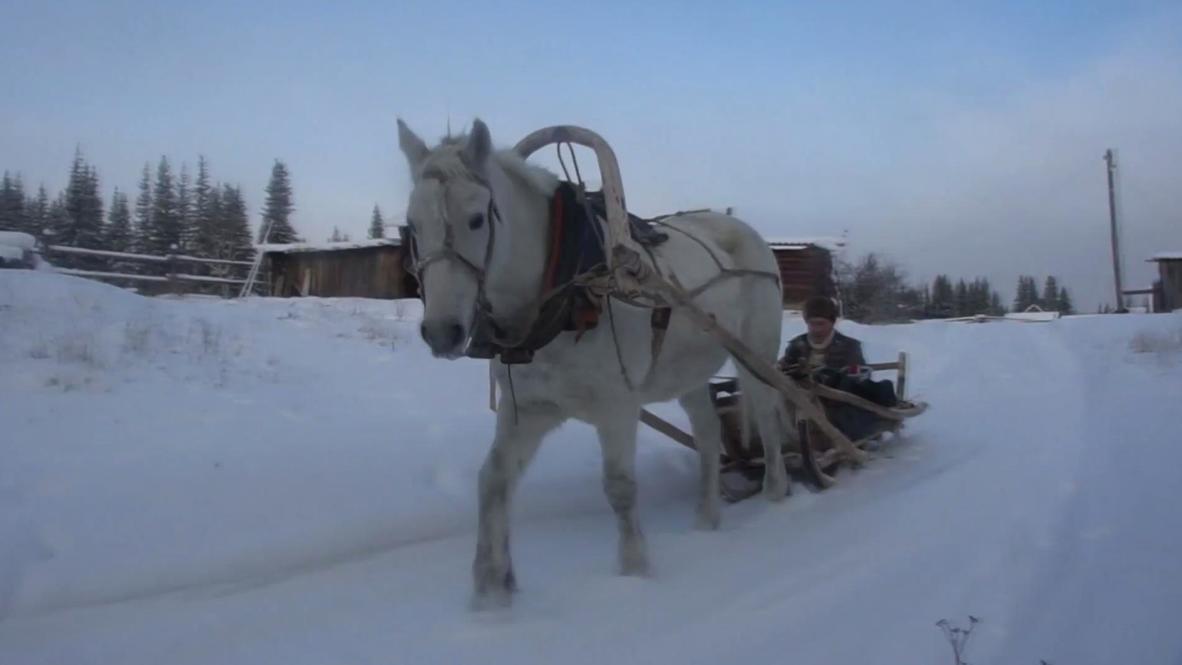 Postman on White Horse! Overcoming Siberia's harsh winter