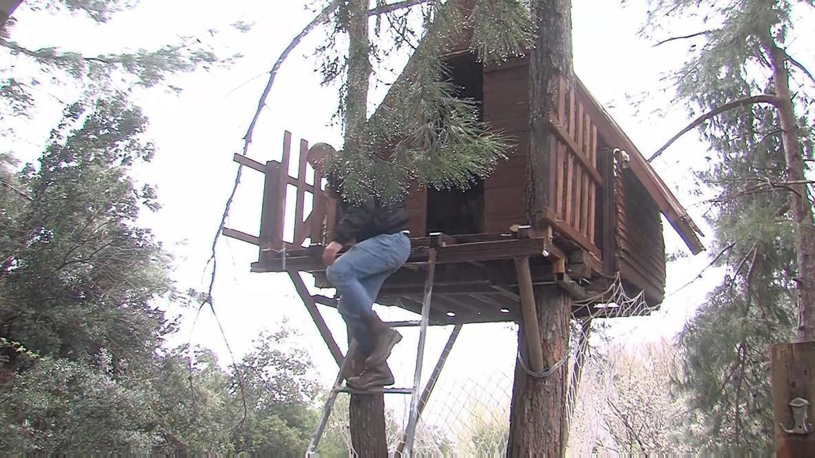 Turquía: Tres montañeros se aíslan en una casa del árbol para evitar el coronavirus