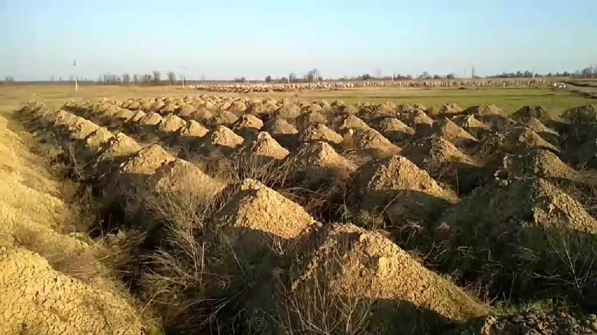 Украина: Шесть сотен могил для возможных жертв коронавируса вырыли в городе Днепре