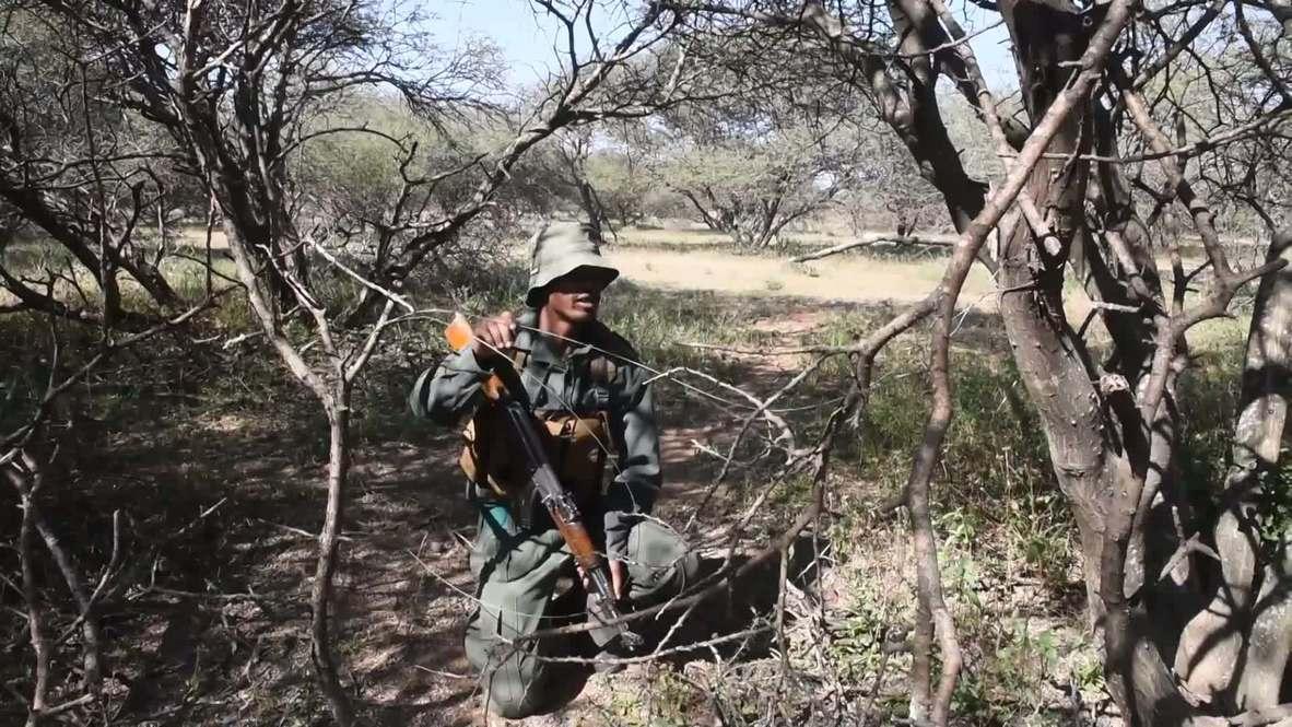Sudáfrica: La vida silvestre lucha contra la caza furtiva y la crisis del covid-19