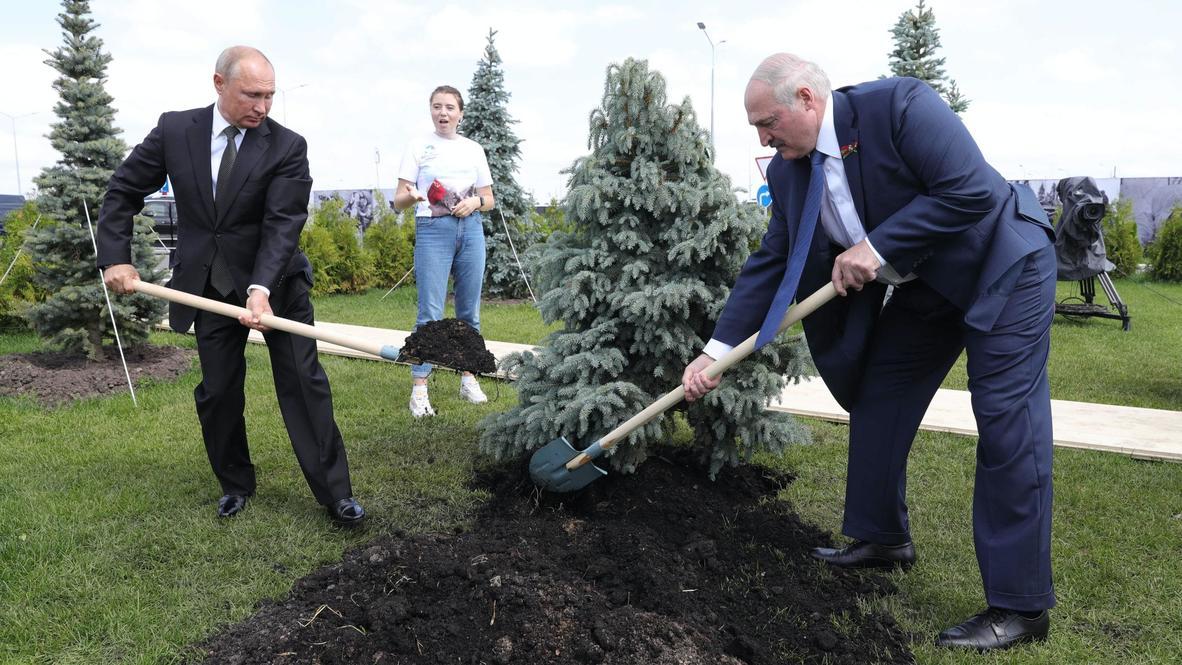 Россия: Путин и Лукашенко посадили ель возле Ржевского мемориала