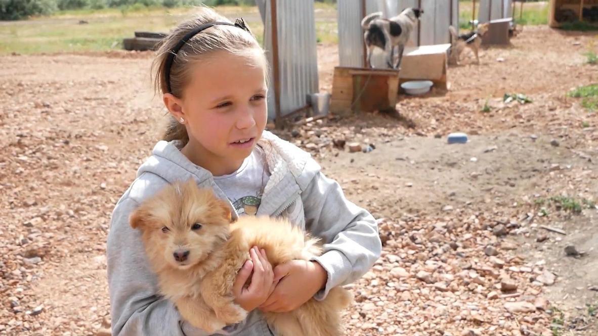 По книге на лапу. Школьники из Копейска сдают макулатуру, чтобы помочь приюту для бездомных собак