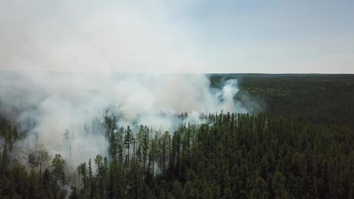Россия: Сибирь и Дальний Восток охвачены лесными пожарами