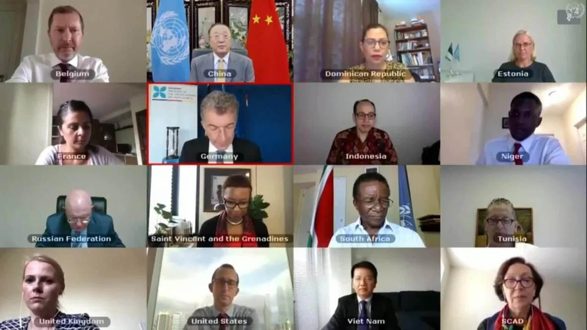 ONU: Rusia y China vetan la extensión de la ayuda transfronteriza a Siria